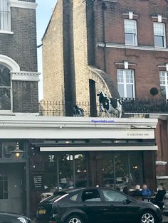 To all the beautiful mothers out there Happy Mother's Day, thank you for putting up with all of my sh...all of OUR rubbish! 😘 #london #battersea #batterseapark #southwestlondon #mothersday #loveyoumum #pub #cows #roof #why #random #pigeontalks