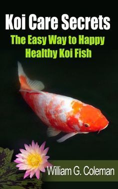 Koi Care Secrets: The Easy Way To Happy Healthy Koi Fish (Water Garden Masters Series Book by [Coleman, William G. Outdoor Ponds, Ponds Backyard, Koi Ponds, Garden Ponds, Backyard Gazebo, Backyard Ideas, Fish Pond Gardens, Water Gardens, Pond Maintenance