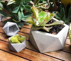 Plantador concreto geométrico icosaedro gran jardinera