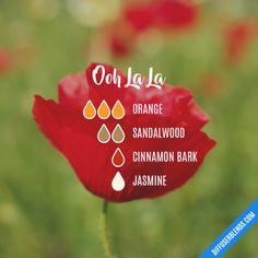 Ooh La La - Essential Oil Diffuser Blend