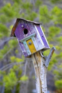 Old Wooden, Purple Bird House~Love the Character~❥ Purple Bird, Purple Haze, Purple Yellow, Wooden Bird Houses, Bird Boxes, Bird Feeders, Decoration, Rustic Birdhouses, Birdhouse Ideas