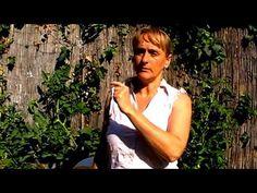 Védelem poloska és takácsatka ellen biokertekben - YouTube Garden, Youtube, Garten, Lawn And Garden, Gardens, Gardening, Outdoor, Youtubers, Youtube Movies