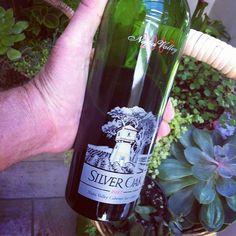 SIlver Oak Cab 2007. Chewy Bazooka of a wine.