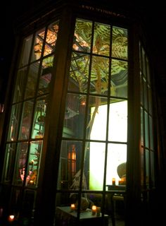 A Magical Look Inside Diagon Alley at Universal Studios, Orlando: http://www.davonnajuroe.com/magical-look-inside-diagon-alley-universal-studios-orlando/ #HarryPotter #DiagonAlley #UniversalStudios #Orlando #Mermaid