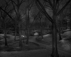 Michael Massaia - Deep in a Dream-Central Park: Central Park, 2013