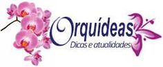 Orquídeas Nature, Flowers, Top Flowers, Tree Fern, Healing Herbs, Organic Fertilizer, Colorful Succulents, Growing Orchids, Orchid Types