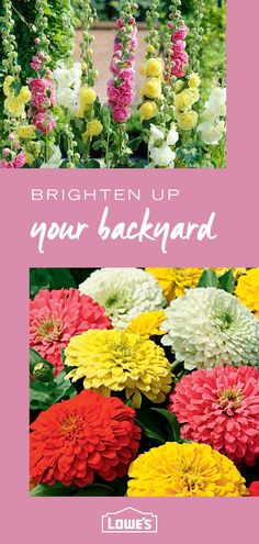 Transform your backyard in time for summer with colorful, easy-care plants, flowers and gardening essentials from Lowe's. Shop the collection today.