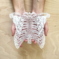 From a collection of hand-cut and laser-cut paper sculptures of human organs by Toronto-based artist Ali Harrison (via Colossal) Paper Cutting, Laser Cut Paper, Colossal Art, Paper Artwork, Anatomy Art, Paper Artist, Free Paper, Artwork Design, Paper Design