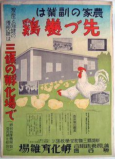 養鶏推奨ポスター 農家の副業は先ず養鶏 蒲原養鶏組合連合会孵化育雛場(新潟)