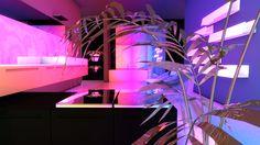 aesthetic purple neon retro goth vaporwave plant pink lights diamond soft plants jodi surra bunda interior influencer fake