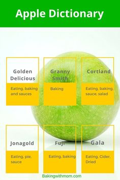 A guide to the best apples for eating, sauce and pies. Perfect for fall.