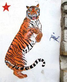 #graffiti of a #tiger, SMOT, Mosko & Associés