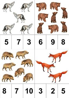 Click to close image, click and drag to move. Use arrow keys for next and previous. Preschool Learning Activities, Kindergarten Math, Very Hungry Caterpillar, Educational Games, Forest Animals, Close Image, Projects To Try, Arrow Keys, Maths