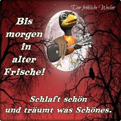 Gute Nacht mein Schatz😘😘😘😘😘😘😘😘😘 Good Night, Good Morning, Neutral, Day, Movie Posters, Good Night Sweetheart, Adult Humor, Frienship Quotes, Nighty Night