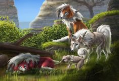 Figured I'd do a Pokemon painting for the release of USUM. Lycanroc and Rockruff Rockruff Pokemon, Pokemon Fake, Pokemon Memes, Pokemon Fan Art, Pokemon Fusion, Pokemon Stuff, Pokemon In Real Life, Pokemon Painting, Wolf Spirit Animal