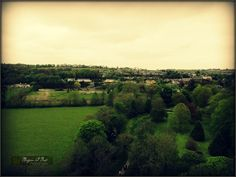 View from atop Blarney Castle, Blarney, Co. Cork, Ireland.