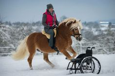 With horses everything is possible