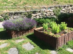 Zahradka / velke kvetinace opletene proutim