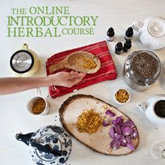 Introductory Herbal Course