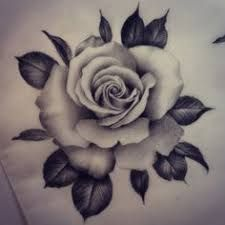 Resultado De Imagem Para Desenhos De Rosas Sombreadas Tatuagem