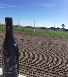 """Notre bouteille de """"Terres Blanches"""" se balade sur l'hippodrome de Cagnes-sur-Mer..."""