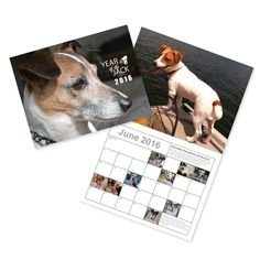 The Year of the Jack calendars are here! Order online or via check or money order.