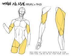 (9) 타코작가(@taco1704)さんのメディアツイート / Twitter Body Reference Drawing, Drawing Reference Poses, Anatomy Reference, Drawing Poses, Drawing Tips, Hand Reference, Drawing Hair, Gesture Drawing, Drawing Drawing