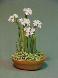 seasonal indoor/outdoor plants - Dollhouse Miniatures by Barb Plevan