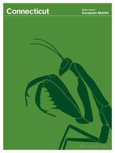 Trademark Global Print Collection - Artist 'Connecticut European Mantis' Canvas Art - 14 x 19 Artist Canvas, Canvas Art, Canvas Prints, Design Museum, Plant Nursery, Illustrations, Grafik Design, Travel Posters, Vintage Posters