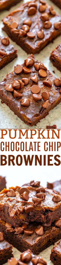 Pumpkin Chocolate Chip Brownies - Rich, fudgy brownies topped with pumpkin and chocolate chips! An EASY, no mixer brownie recipe that& FASTER than using a boxed mix! Bring on pumpkin spice season! Pumpkin Brownies, Chocolate Chip Brownies, Pumpkin Chocolate Chips, Fudgy Brownies, Baking Brownies, Chocolate Cakes, Brownie Recipes, Cake Recipes, Dessert Recipes