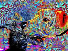 Dog and kitten in a psychedelic picture