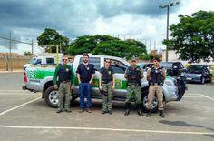 #News  IBAMA e PM apreendem mais de 60 pássaros em Capelinha