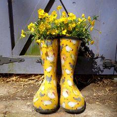 Muck Boots купить в Санкт-Петербурге (СПб), с