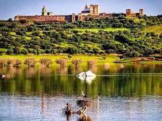 (1) Alentejo - eu ouvi um passarinho - YouTube Portugal, Portuguese, Golf Courses, 1, River, Outdoor, Monuments, David, Facebook
