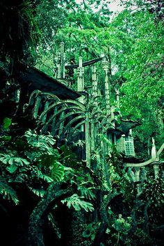 Green Heaven, Xanadu
