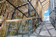 Galeria - Habitat ITESM Leon / SHINE Architecture + TAarquitectura - 18