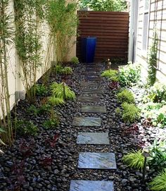 We're looking at a house that has an ugly dog run. I would repurpose the area into this .... along with a growing wall