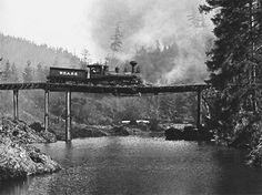 Don't take this train!  The destruction of the 'Texas' locomotive in Buster Keaton's masterpiece The General (1926) was the single most expensive shot in silent cinema history. After the stunt, the wreckage of the locomotive and the bridge remained at the bottom of the river until it was dragged up as part of the WWII scrap metal drive.   Source: haroldlloyds