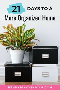 We all want to have a clean and organized home, but sometimes, it can be overwhelming if you don't know where to even start!  Below you will learn how to tackle some of the spaces in your home that you need to clean and organize but may not know where to start. Create A Budget, Frugal Living Tips, Organizing Tips, Saving Ideas, Life Organization, Getting Organized, Adulting, Cleaning, Spaces