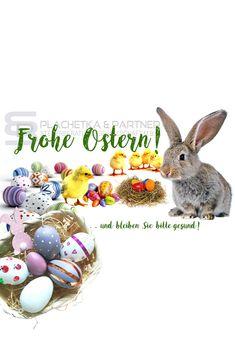 Gerade jetzt und mit großem, übervollen Herzen ... #Coronavirus #Covid19 #Virus #Easter2020 #FroheOstern #Ostern #Ostern2020 #Easter #Easterbunny #Osterhase #Austria #Osternest Social Media Plattformen, Corona, Happy Easter, Easter Bunny
