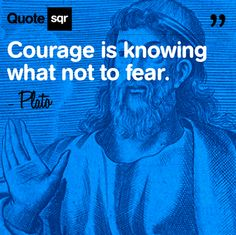 Courage is knowing what not to fear.  - Plato #quotesqr #quotes #inspirationalquotes