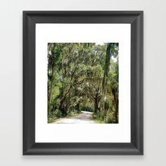 Savannah - $30