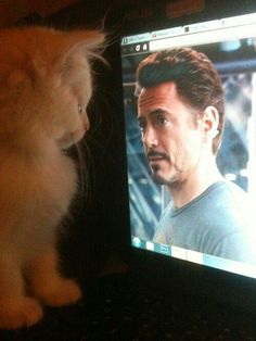 Let the staring contest begin :)