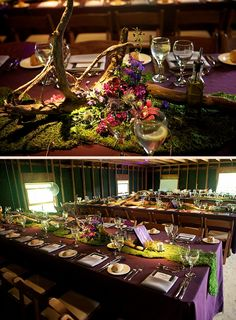 Alice and Wonderland theme with moss and driftwood