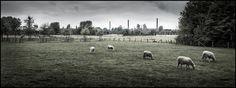 Duisburg by Peter Drechsler on 500px
