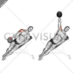 MEDIAL Incline Dumbbell Lateral Raise