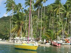 """Marigot Bay onthe island of St. Lucia......MY """"One Particular Harbour"""""""