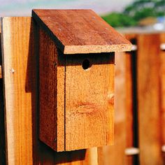 Shed-roof birdhouse...    You don't have to be a woodworking whiz to build this simple birdhouse: it requires only straight cuts that you can make with a handsaw, saber saw, circular saw, or table saw.    Wrens, chickadees, and bluebirds will appreciate its deep overhang and perchless entry.