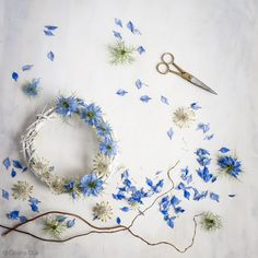 love-in-a-mist wreath styling and photography by Cristina Colli