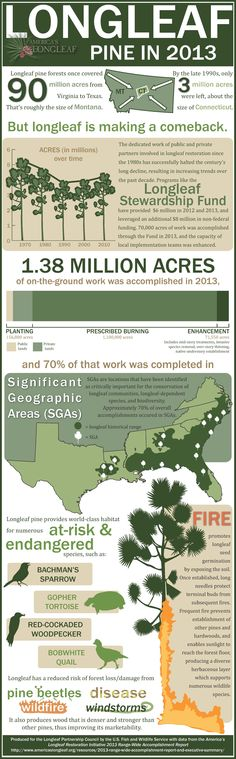 Infographic Sustaining Agricultural Production through Education - accomplishment report